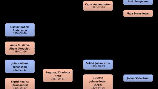 Familjen Anders Gustav Johansson Åbom