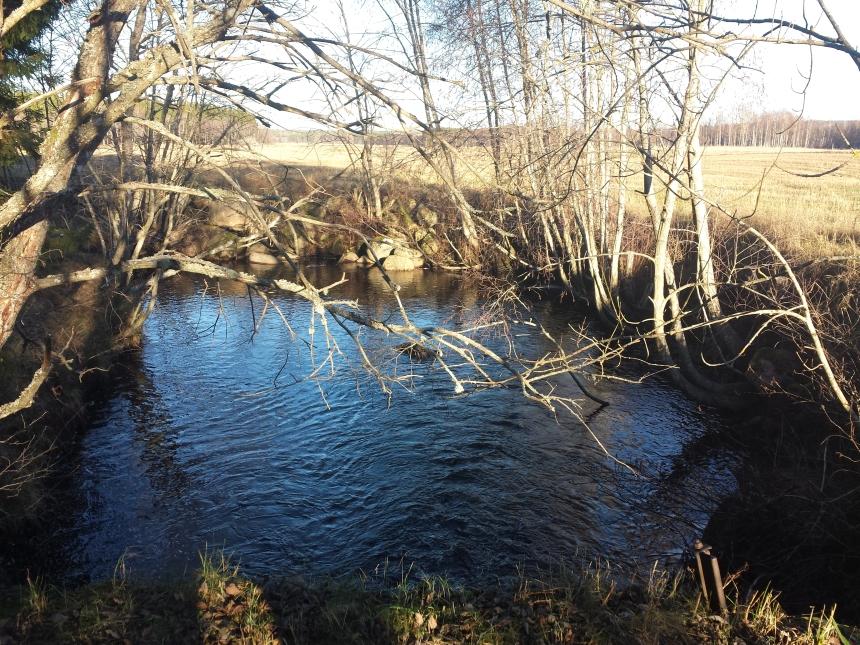 Bäcken vid Tullstugan