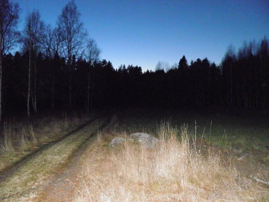 Här låg ryttarboställe Lunden