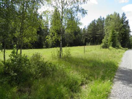 113. Backstugan, Linneberg, Lilla Bråared