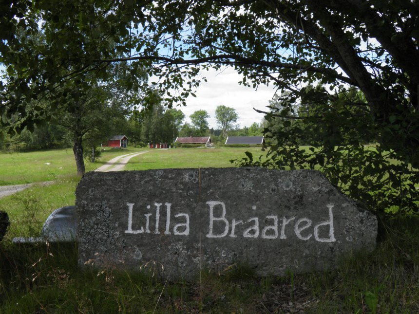 Lilla Bråared