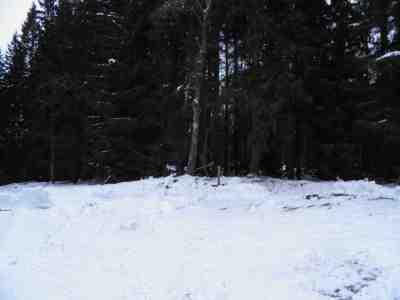 Torp Aspelund: Hitom torpskylten låg soldattorpets byggnader