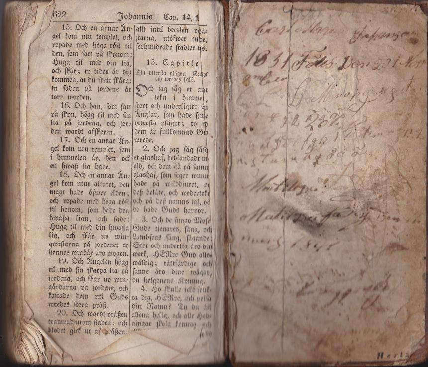 Bibel tillhörande Carl Magnus Johansson född 20 i november 1831