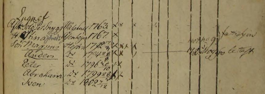 Familjen Petter Snygg i Nyhemman Lugnet i Bösshult Norra Hestra 1801-1810 (Bild från http://www.arkivdigital.se)
