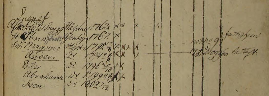 Familjen Petter Snygg i Nyhemman Lugnet i Bösshult Norra Hestra 1801-1810 (Bild från www.arkivdigital.se)